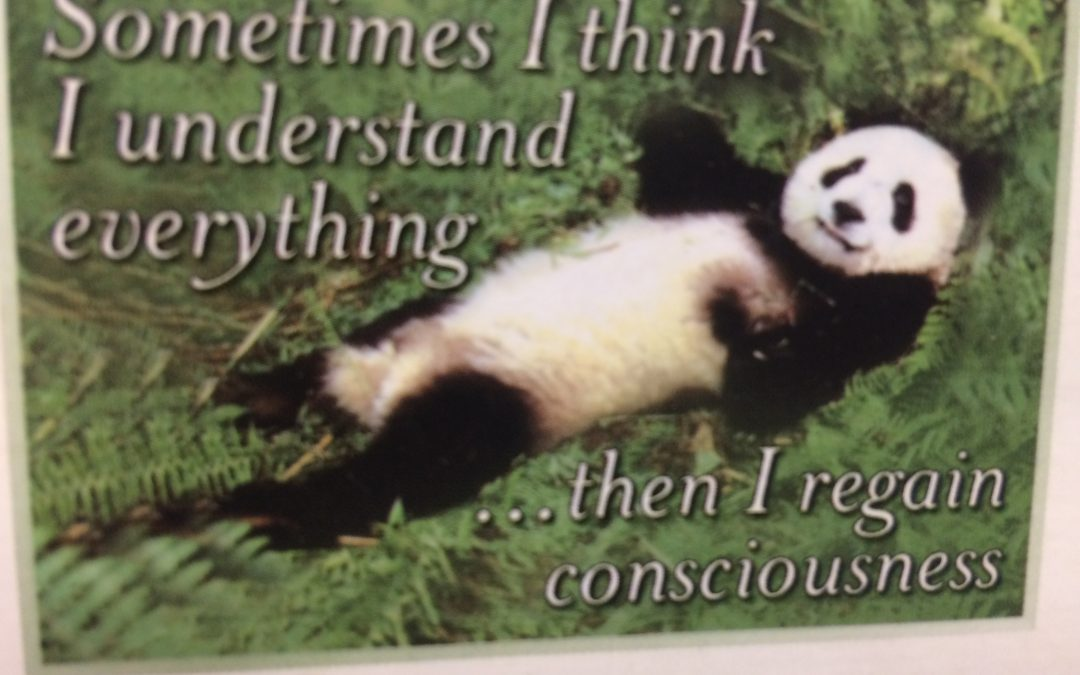 A 'Panda Moment' …